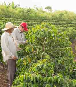 KoffiePro - Fairtrade