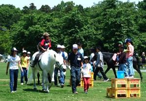 ネーブルパーク ポニー乗馬体験の様子