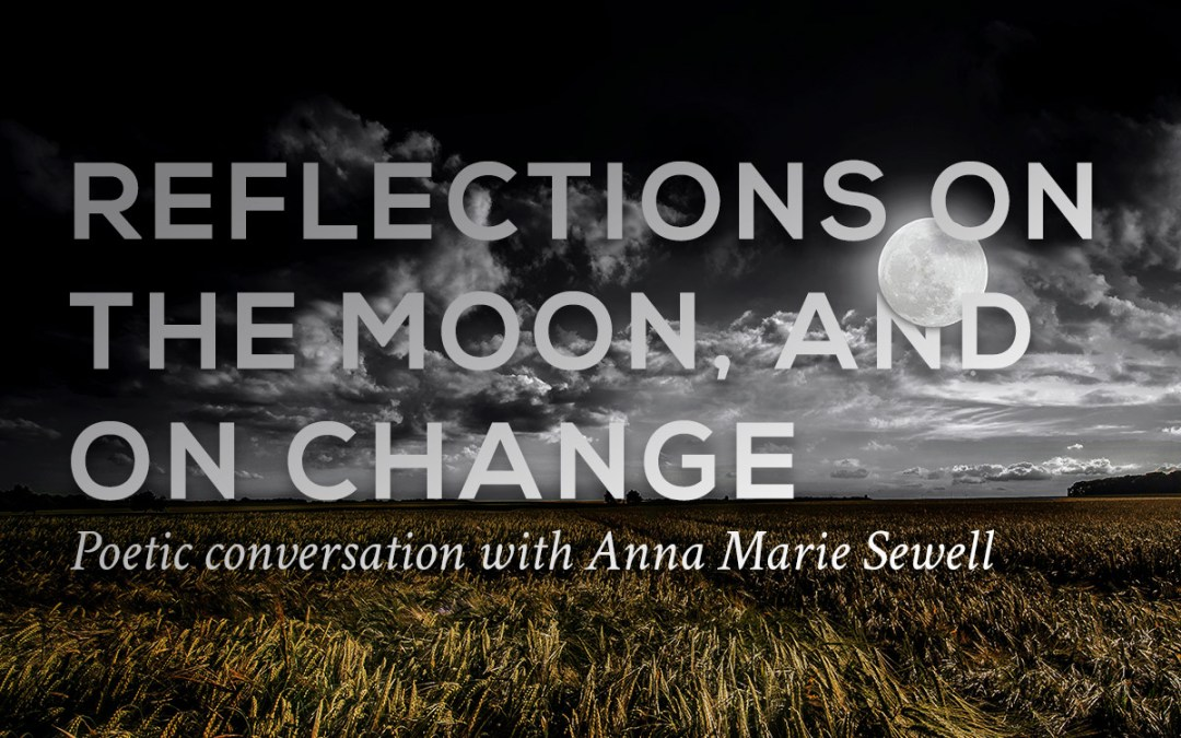 Anna Marie Sewell book launch