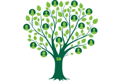 Image of family tree along with silhouettes of individuals
