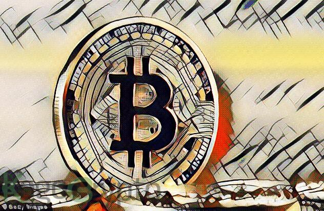 Bitcoin hits over $49K first time ever in crypto history