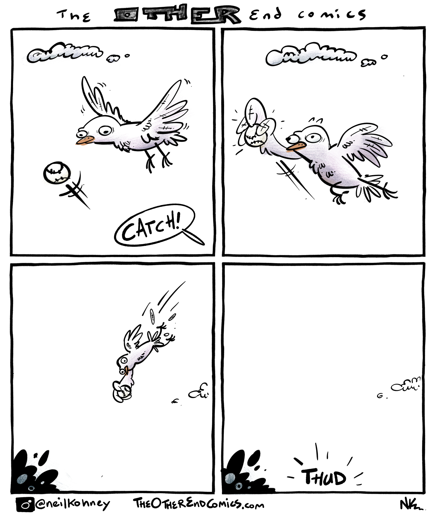 This, and this alone, is why you don't see birds taking part in major sporting events