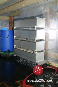 Bakki Shower v bacteria house
