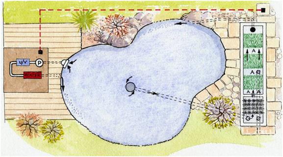 koi pond construction plan