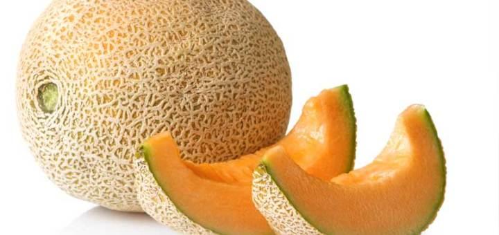 Propietà del Melone, un vero integratore e ottimo contro la cellulite