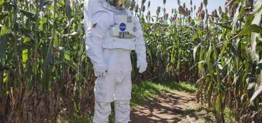 coltivazioni-di-riso-soia-patate-e-grano-a-sostenere-i-primi-coloni-su-marte