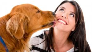 Farsi leccare in faccia dal cane è pericoloso