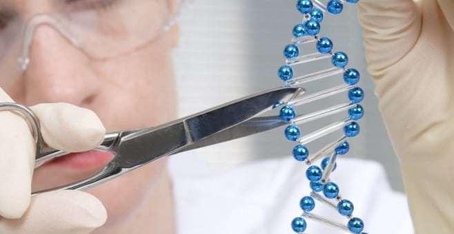 Metodo di taglia e incolla del Dna per trattare un malato di cancro