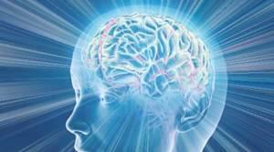 Nuova scoperta su come funziona il cervello