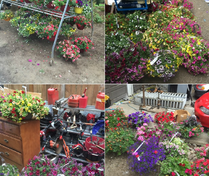 The flower baskets and merchandise stolen from Fred Meyer. (