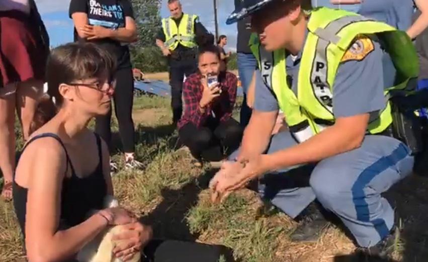 activists with chickens crash clark county 6252018_1529990497848.jpg.jpg