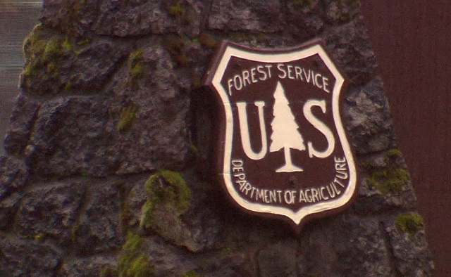 generic USFS sign forest service