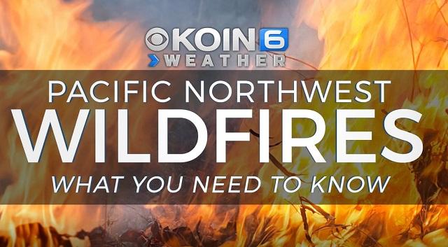 wildfire image_1560888717290.JPG.jpg