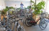 KokkieBikes-Lemelerveld-fiets-race-mountainbike