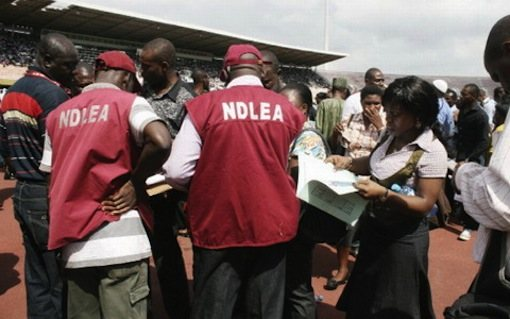 NDLEA Arrests 67 Persons In Edo For Alleged Drug Trafficking 3