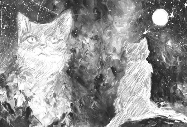 el-gato-que-miraba-las-estrellas02