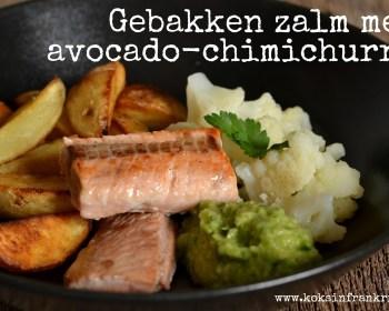 Zalm met avocado chilichurri