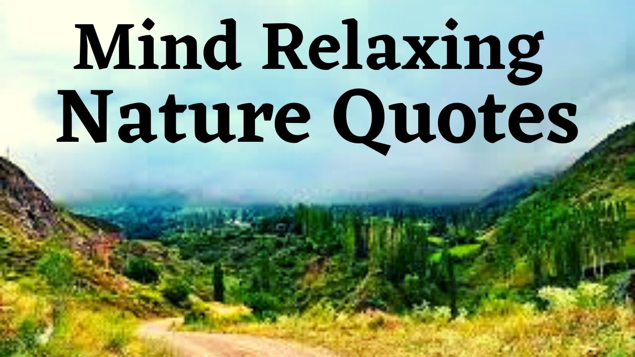 These 55 Enchanting Quotes About Nature Will Have You Dreaming of the Great Outdoors