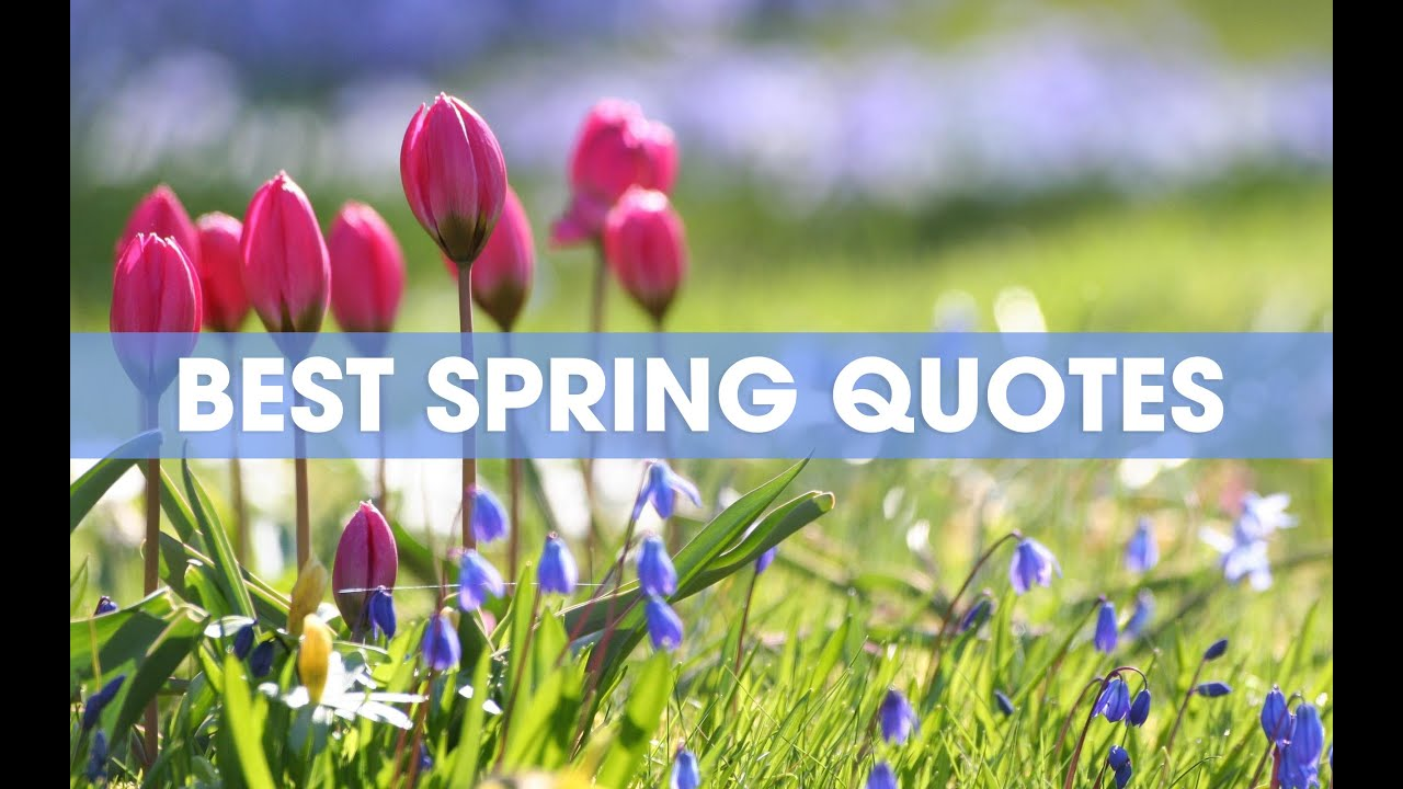 Sunshine Is on Its Way—Here Are the 50 Best Springtime Quotes for This Season of Hope