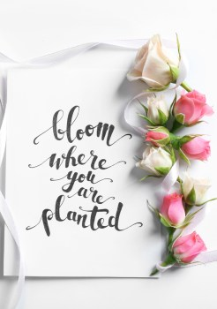 50 Flower Quotes to Remind You to Smell The Roses