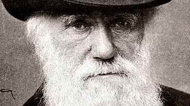 Photo of Falsifying Darwin