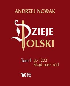 Dzieje Polski. Tom 1