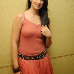 Actress-Laxmi-Rai-Hot-Stills-14