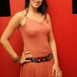 Actress-Laxmi-Rai-Hot-Stills-2