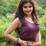 Actress-Manochitra-Hot-Stills-4