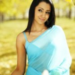 Actress-Trisha-Hot-Stills- (14)