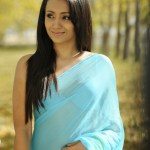 Actress-Trisha-Hot-Stills- (1)