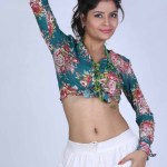Actress Gehana Vasisth Hot Stills (2)