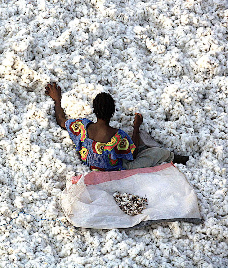 Burkina Faso, Bangladesh, Cotton Production, Cotton Industry, African Cotton Industry, Africa Cotton, KOLUMN Magazine, KOLUMN