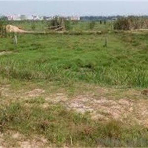 Plots Of Land For Sale In Lekki Nigeria