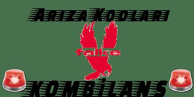 Falke Kombi Arıza Kodları