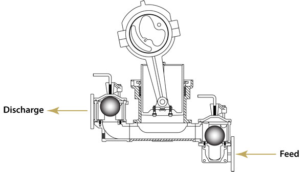 Plunger Pump Assembly Diagram