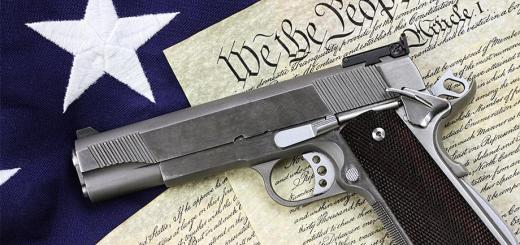 Handgun on Constitution