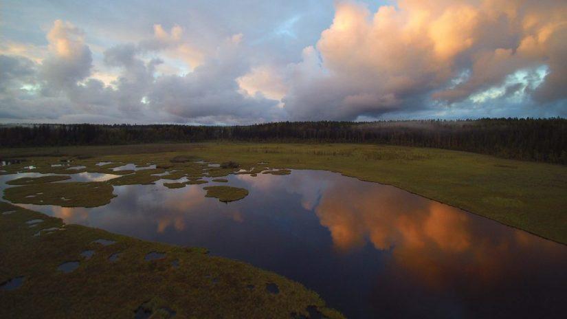 Kommeen Kurjen puumajoitus sijaitsee Hanhijärvi-lintujärven rantamilla.