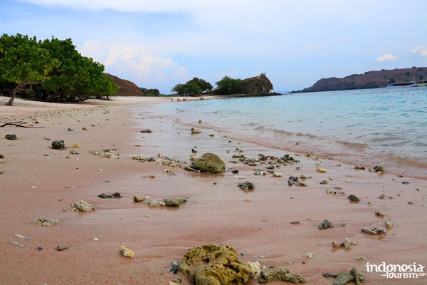 A Famous Beach In Komodo Island Pink Beach