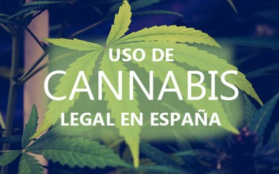 Cannabis legal en España