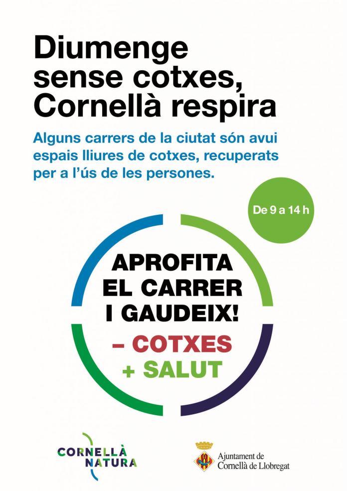 DIUMENGESENSECOTXES_CARTELL_alta