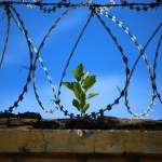 Tolak Hukuman Kebiri, RUU Kekerasan Seksual Harus Jadi Prioritas