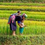 Kapan Lahan Ini Menjadi Milik Perempuan Petani?