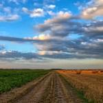 Kekerasan, Pemecahbelahan yang Terjadi pada Perempuan Petani Kendeng