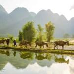 Pengalaman Perempuan Petani Mengolah Makanan Tradisional Menjadi Makanan Masa Kini