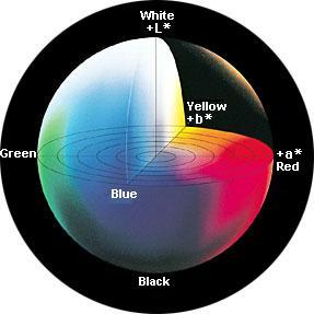 lab value diagram full skeleton let's look at some color spaces.···i - part i precise communication | konica minolta