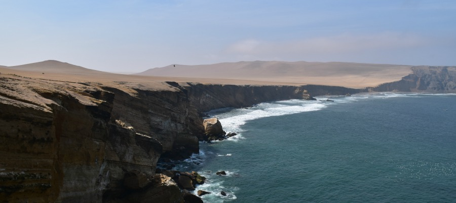 Visiting the National Reserve of Paracas