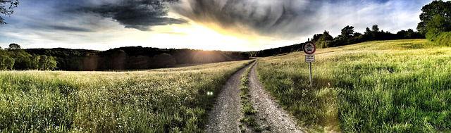 Der Weg - Bildquelle: pixabay / MarleneBitzer (Lizenz: CC0 Public Domain)