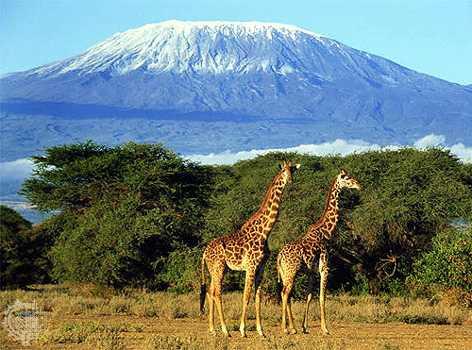 Top 5-mount-kilimanjaro-2