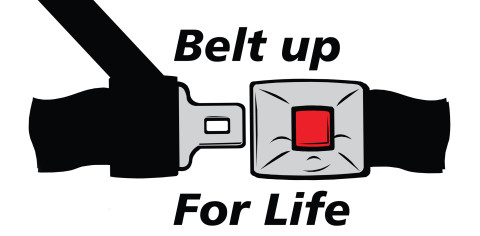 This Seat Belt Matter